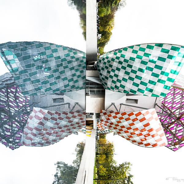 Christian Aussillou Photographe Art contemporain Butterfly 1 Fondation Louis Vuitton elovart Samantha Salloum