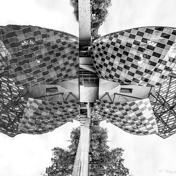 Christian Aussillou Photographe Art contemporain Butterfly 2 Fondation Louis Vuitton elovart Samantha Salloum